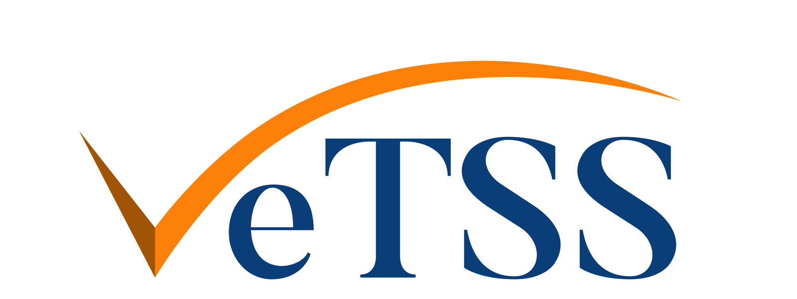 Research Institute in Automated Program Analysis and Verification (VeTSS)
